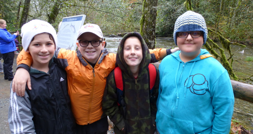 Goldstream Fieldtrip